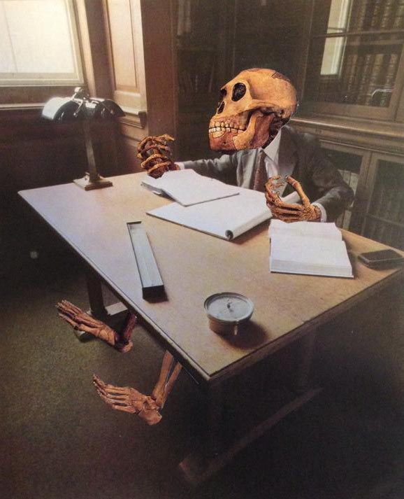 desk skeleton