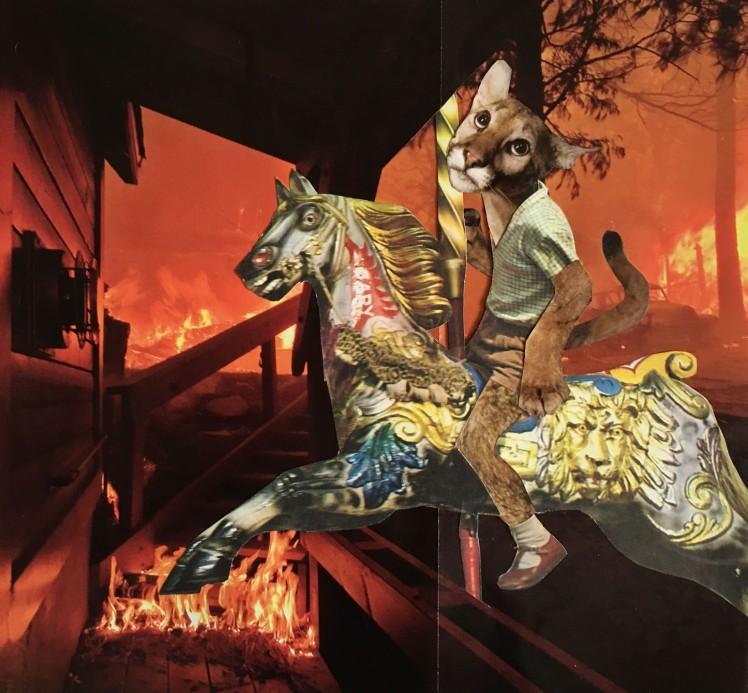 cougar fire