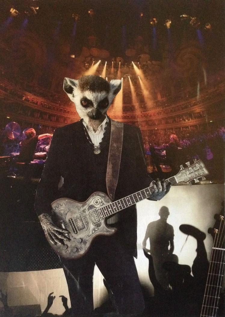 rocking lemur