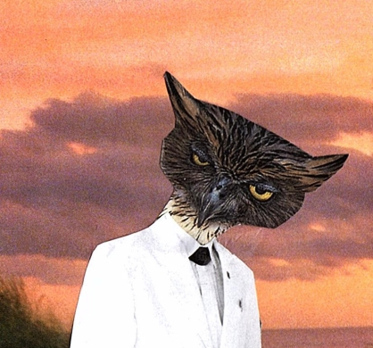 owl server