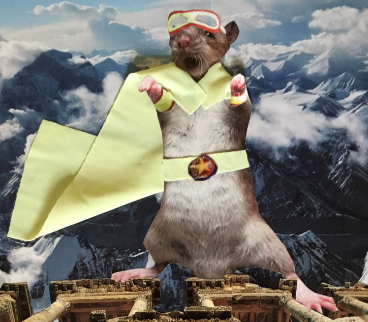cropped mouse hero