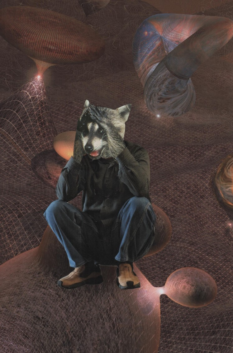 raccoon_wormhole