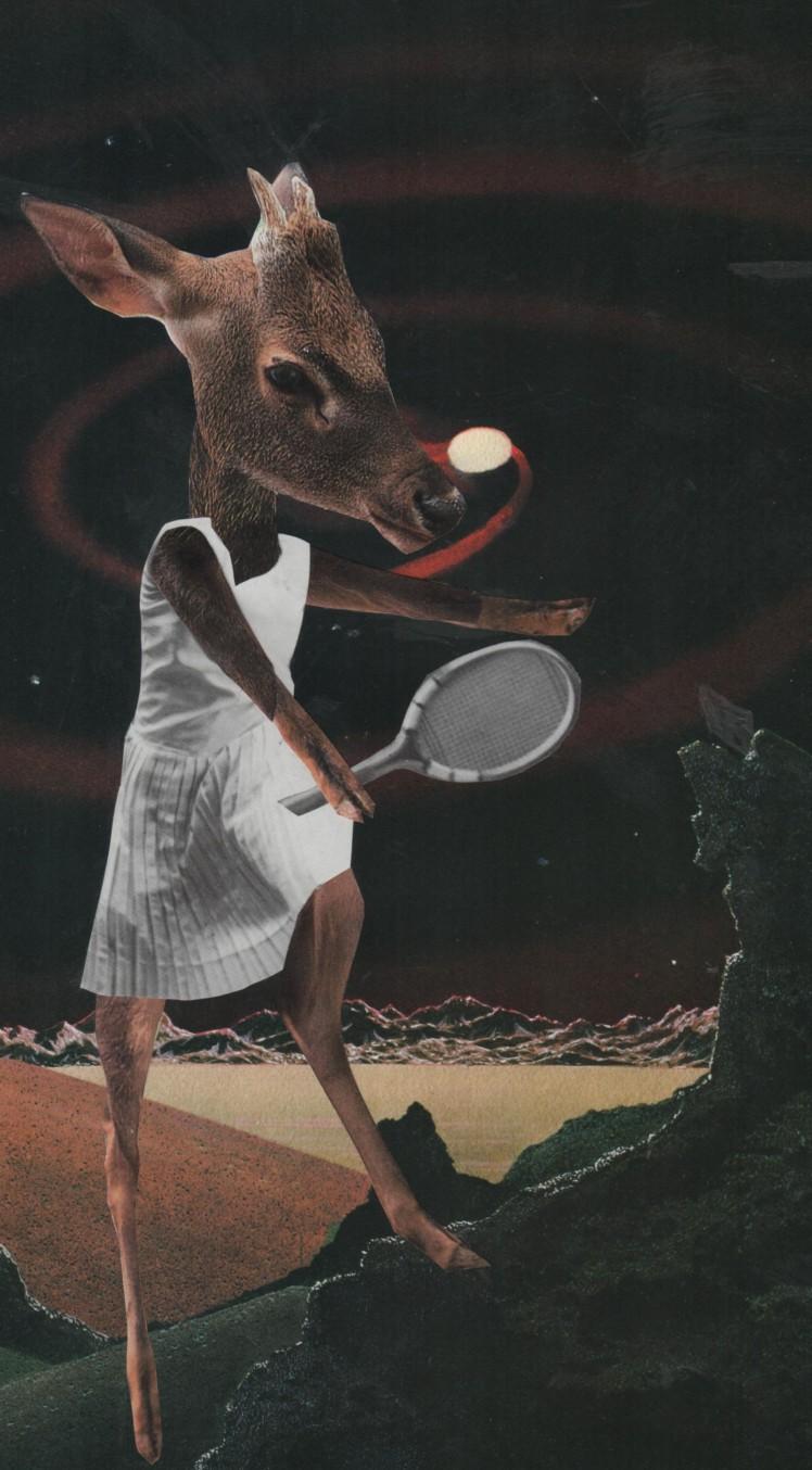 tennis-deer