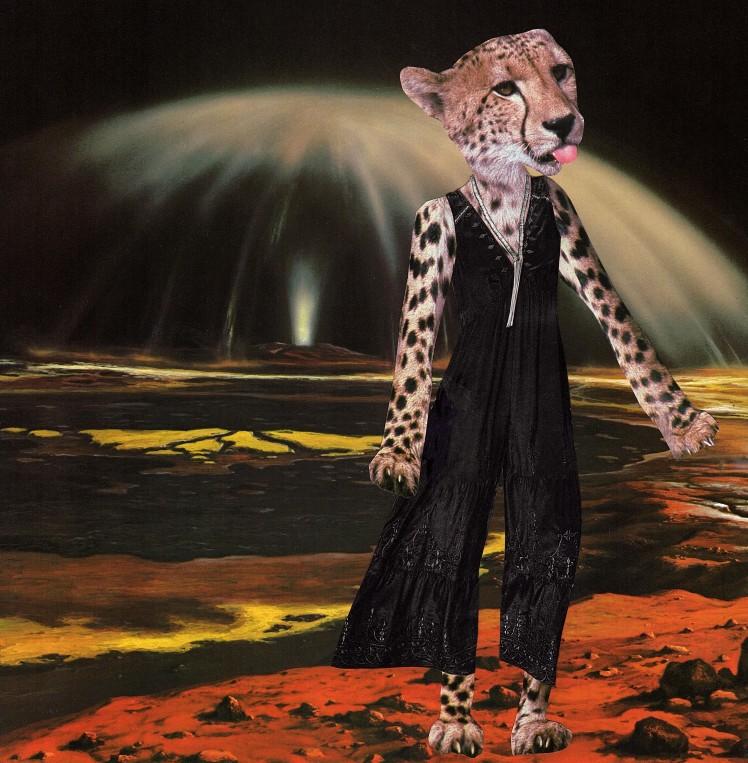 cheetahjumpsuit