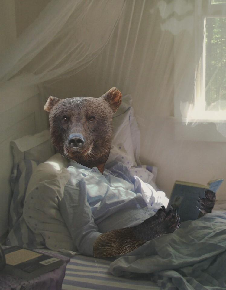 1Reading Bear